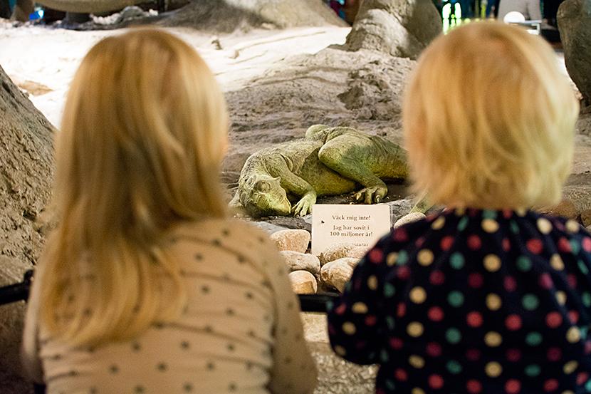 Dinosarieunge-Tilli-Lola-Naturhistorsika