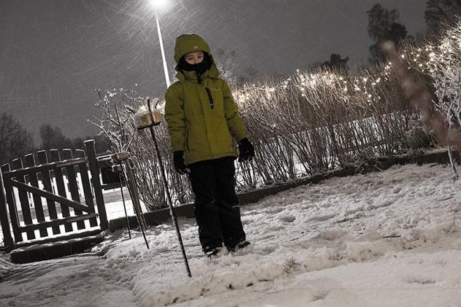 Ville-i-snö-1