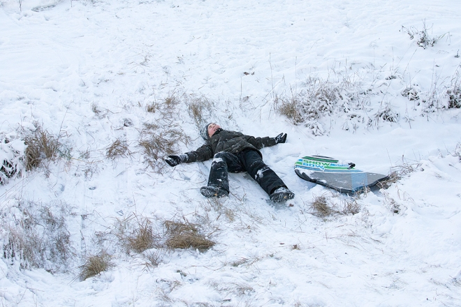 Ville utslagen i snön