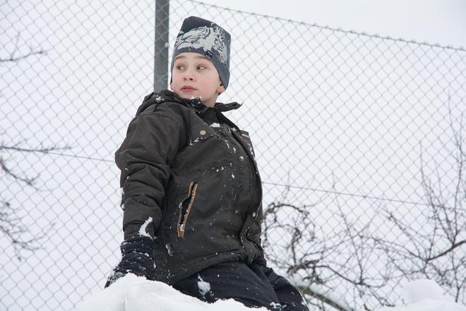 Ville i snöhögen